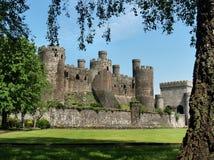 Conwy Schloss Stockbilder
