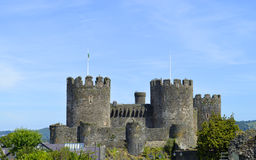 Conwy-Schloss in Nord-Wales Stockbild
