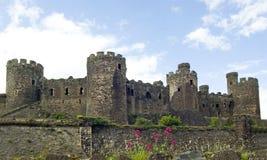conwy slott Royaltyfri Fotografi