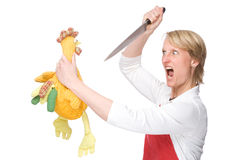 The cook. Full isolated studio picture from a young cook with knife and chicken Royalty Free Stock Photography