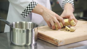 Cook adds coarsely chopped ginger root in pot in industrial kitchen stock video footage
