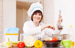 Cook  adds  spices into soup pan Stock Images