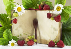 Cook book with strawberries Stock Images