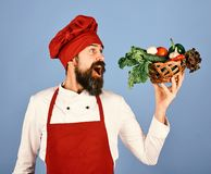 Cook with cheerful face in burgundy uniform holds vegetables. In wicker bowl. Chef holds lettuce, tomato, pepper and mushrooms. Vegetarian diet concept. Man stock photography