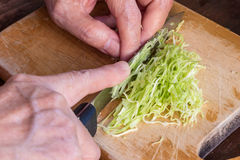 Cook, chop and slice cabbage vegetable Royalty Free Stock Photos