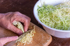 Cook, chop and slice cabbage vegetable Stock Photos