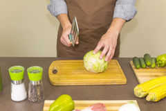 Cook chopped cabbage Royalty Free Stock Photo