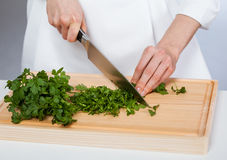 Cook chopping fresh parsley Royalty Free Stock Image
