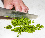 Cook is chopping herbs Stock Photos