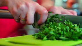 Cook chopping parsley stock footage