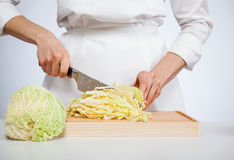 Cook chopping savoy cabbage Stock Image