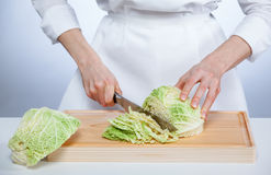 Cook chopping savoy cabbage Stock Images