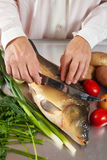 Cook cooking carp fish Royalty Free Stock Photo