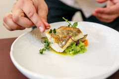 Cook cooks fish dish - baked fillet of pikeperch, zander. Hands in frame Royalty Free Stock Images
