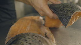 Cook cut up raw fresh fish in kitchen, slow motion stock video footage