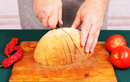 Cook cuts the bread. Stock Photography