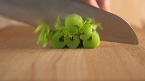 A cook cuts celery with a knife