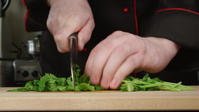 Cook cuts a parsley on a cutting board in a kitchen