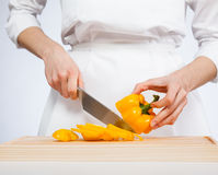 Cook cutting fresh sweet pepper Stock Images