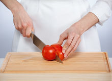 Cook cutting fresh tomato Stock Image