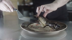 The cook decorate plate with fish by spices on stock footage