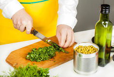 Cook finely shred Stock Images