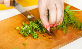 Cook finely shred dill and parsley Stock Image