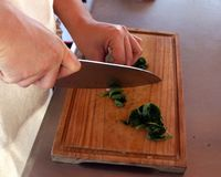 Cook hands. Cutting vegetables. prepranado the mise en place of vegetables on a wooden board, with a knife in hand and green vegetables Stock Image