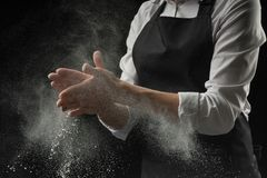 Cook hands in flour on black background banner. Making pizza, pasta, baking bread and sweets. Cook hands in flour on black background banner. Making pizza royalty free stock image