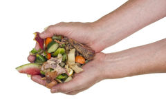 Cook hold food kitchen waste Royalty Free Stock Photo