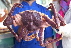 Cook holding a large crab