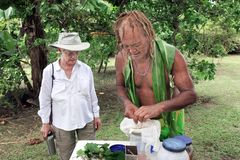 Cook Islander showing  tourist woman how to prepare a herbal dri. Cook Islander Pa showing a western tourist women how to prepare a herbal drink from local Royalty Free Stock Photography
