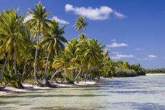 Cook Islands - Tropical Paradise - South Pacific. The tropical paradise of Aitutaki Lagoon in the Cook Islands in the South Pacific royalty free stock photography