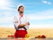 Cook at kitchen Stock Photography