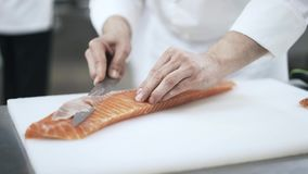 Cook making thin fish slices in a sushi restaurant. Hands of an unrecognizable cook making thin fish slices in a modern restaurant. Making sushi. Japanese stock video footage