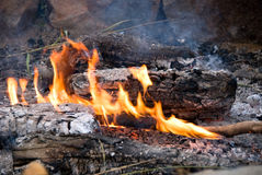 Cook out fire Royalty Free Stock Images