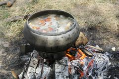 Cook in the pot on a fire 2 Stock Image
