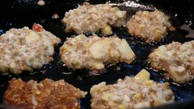 The cook prepares the cutlets in a frying pan. Small pancakes are fried in oil. stock footage