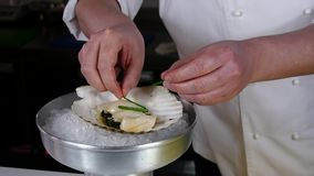 The cook prepares a sea salad of scallops. The chef prepares a sea salad of scallops with various spices in the restaurant`s kitchen. Slow motion shot. Recipes stock video