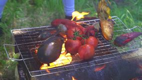 Cook prepares vegetables on the fire on the grill ,close-up stock footage