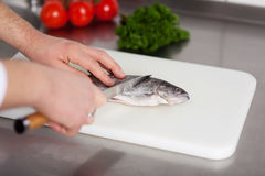 Cook preparing fish Royalty Free Stock Images