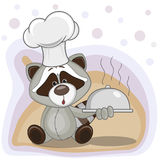 Cook Raccoon Royalty Free Stock Photography