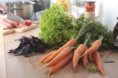 Cook& x27; s entrega a preparação da salada vegetal - tiro do close up Fotos de Stock