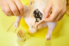Cook sewing stuffed chicken Royalty Free Stock Images