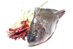 Cook thai fish Royalty Free Stock Photo