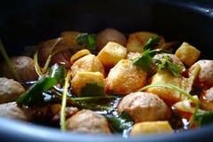 Cook Tofu Stock Photography