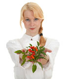 Cook woman with bunch of chilli Royalty Free Stock Photos