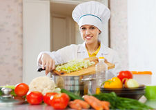 Cook woman cooking vegetarian dinner Stock Image