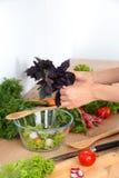 Cook& x27; s вручает подготавливать vegetable салат - съемку крупного плана Стоковые Изображения RF