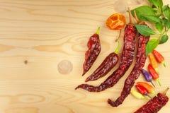Cookbook και καρυκεύματα στον ξύλινο πίνακα Cookbook και συστατικά Σκόρδο, πιπέρια τσίλι και κρεμμύδι Συστατικά για το μαγείρεμα Στοκ εικόνα με δικαίωμα ελεύθερης χρήσης